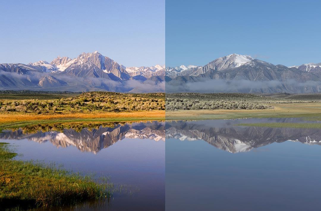 Photo Comparison - Film vs Digital