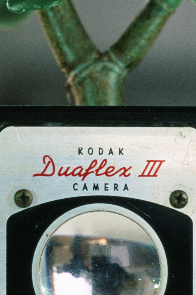 Fujifilm Velvia 50