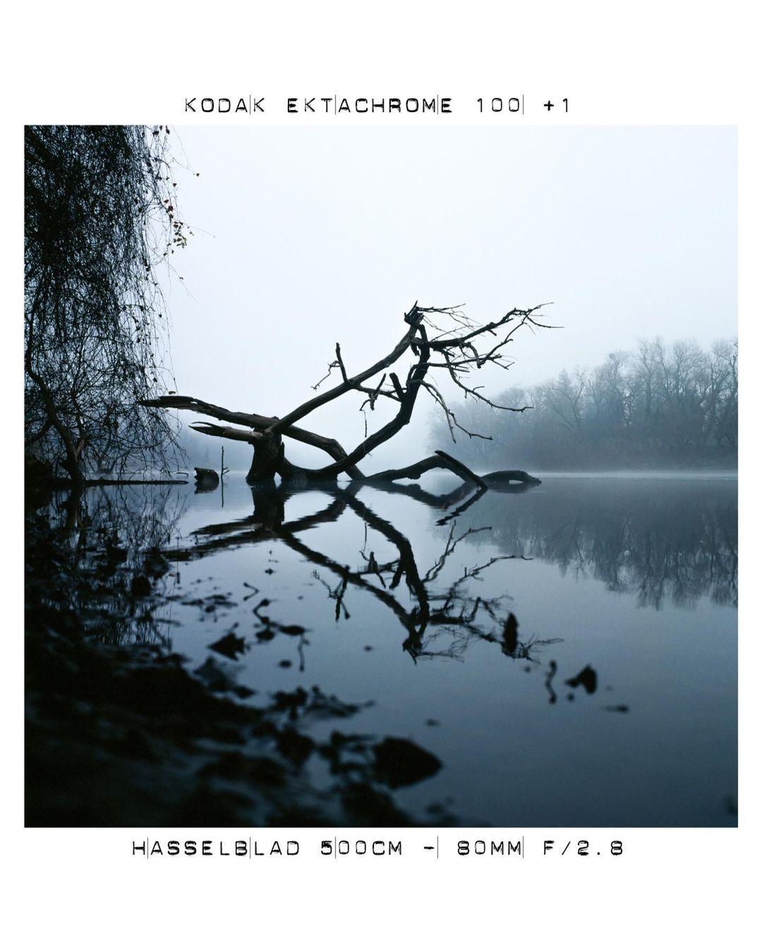 Kodak Ektachrome 100 +1, Hasselblad 500CM - 80MM F/2.8